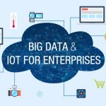 Big Data Management for the Enterprise