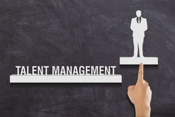 Talent Management Software for Small Business