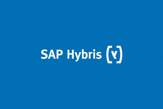 SAP Hybris, Ecommerce Solutions