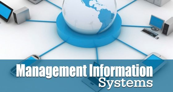 Management Information Systems (MIS) Software