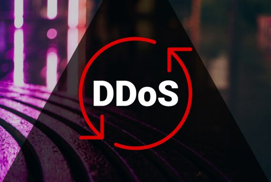 Distributed Denial of Service (DDoS) Protection