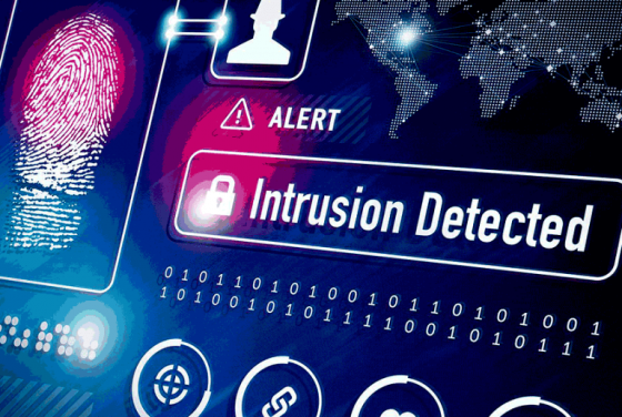 Intrusion Detection Systems Software