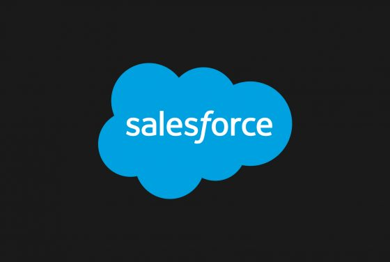 Salesforce Maintenance & Support Service Providers